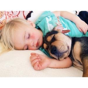 bebe-e-cachorro-10