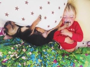 ensaio-fotografico-bebe-cachorro