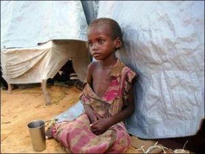 FAO-le-nombre-d-affames-diminue-mais-reste-bien-trop-eleve