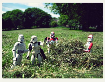 """""""Make hay whilst the twin suns shine."""""""