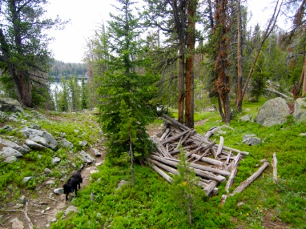 Wind Rivers Cabin Ruins